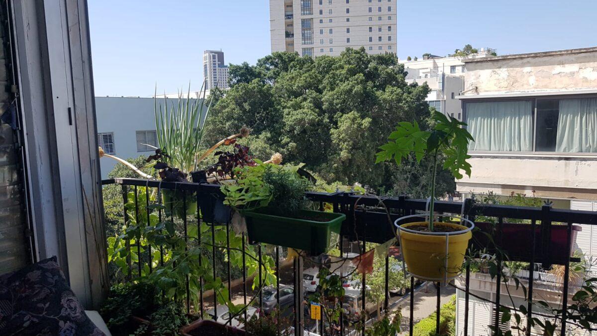בלב העיר במיקום מבוקש דירה ענקית 121 מ״ר בנוי עם מרפסת לצמרות העצים!