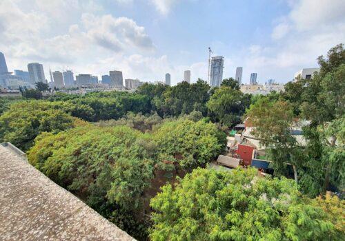 ברחוב קליי דירת גג עם נוף לגינת פייבל! 130 מ״ר בנוי + 70 מ״ר גג עם מעלית וחניה בטאבו!